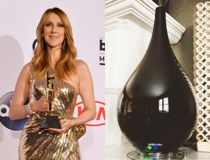 Celine Dion Humidifier