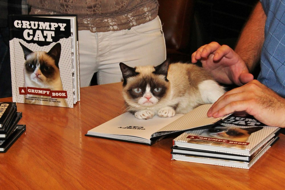 Booksigning Event for Grumpy Cat! Look at those Paw Prints!