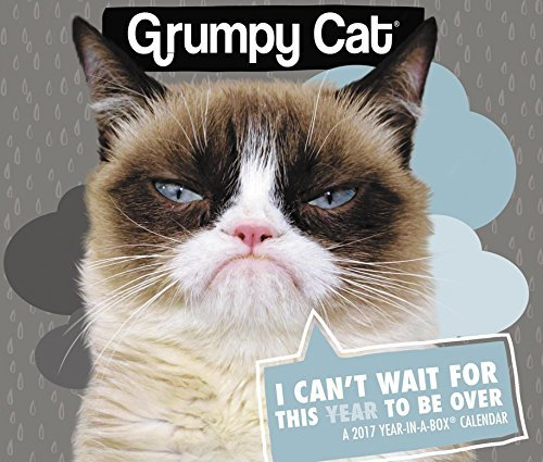 Grumpy Cat 2017 Calendar Edition Available At Amazon